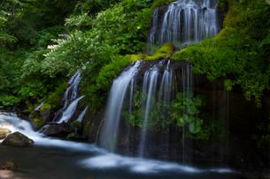 吐竜の滝の写真素材 [FYI01683990]