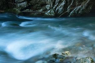 円原川伏流水の流れの写真素材 [FYI01684256]