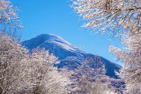 蓼科山の雪景色の写真素材 [FYI01684329]