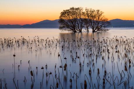 湖北町の夕暮れの写真素材 [FYI01684355]