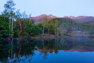 乗鞍高原まいめの池と乗鞍岳の写真素材 [FYI01684727]