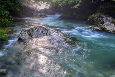 円原川の伏流水の流れの写真素材 [FYI01685056]