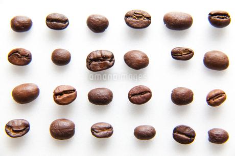 コーヒー豆の写真素材 [FYI01685383]