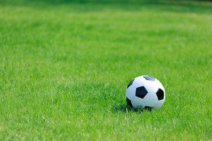 芝生の上のサッカーボールの写真素材 [FYI01685452]