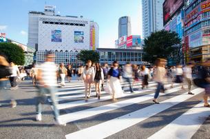 渋谷のスクランブル交差点の写真素材 [FYI01685477]