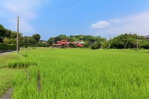 田舎の田園風景の写真素材 [FYI01685657]