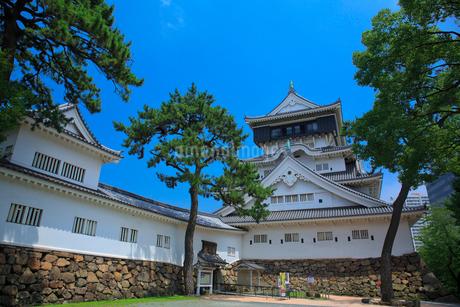 小倉城の写真素材 [FYI01685777]