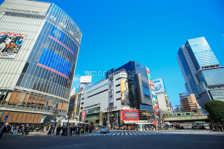 渋谷駅ハチ公口駅前スクランブル交差点周辺の写真素材 [FYI01685844]