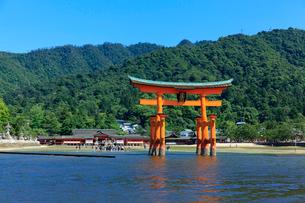 大鳥居と厳島神社の写真素材 [FYI01685878]