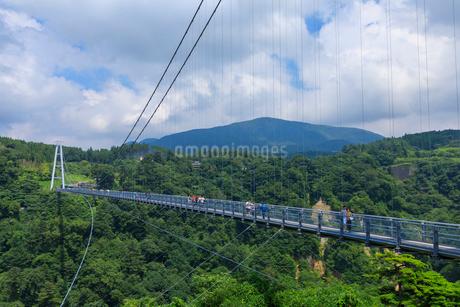 九重夢大吊橋の写真素材 [FYI01686301]