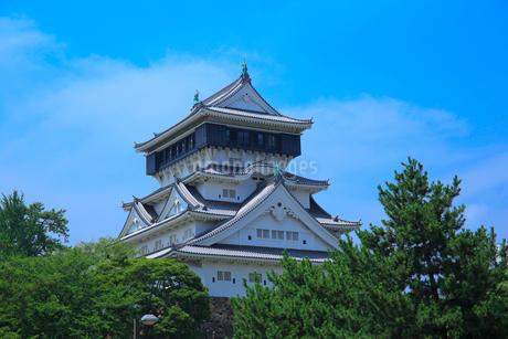 小倉城の写真素材 [FYI01686453]
