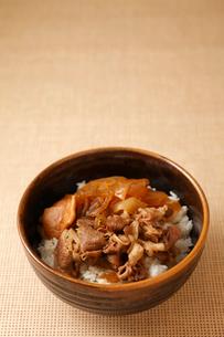 牛丼の写真素材 [FYI01687136]