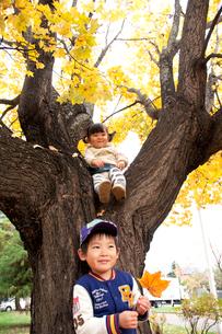紅葉の木に寄り添う子供たちの写真素材 [FYI01687791]