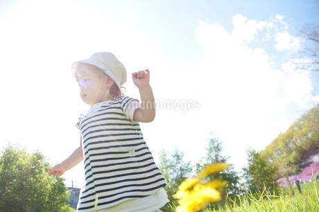 草原で歩く幼い女の子の写真素材 [FYI01687902]