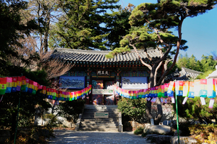 梵魚寺 釜山の写真素材 [FYI01688191]