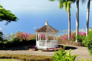 コーヒー農園の白い東屋と海 ハワイ島の写真素材 [FYI01688362]