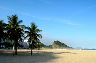 コパカバーナ海岸の砂浜とヤシの木の写真素材 [FYI01689015]