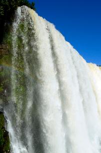 イグアスの滝悪魔ののど笛の写真素材 [FYI01689044]