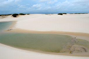 砂丘と池の写真素材 [FYI01689150]