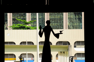 カテドラルメトロポリターナのシルエットの像の写真素材 [FYI01689347]