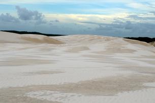 砂丘の写真素材 [FYI01689440]