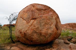 デビルズマーブルの奇岩群の写真素材 [FYI01690182]