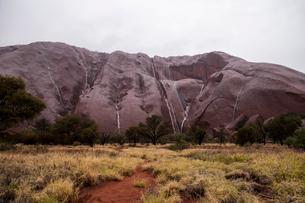 エアーズロックの岩山の岩肌をつたい落ちる雨水の写真素材 [FYI01690485]