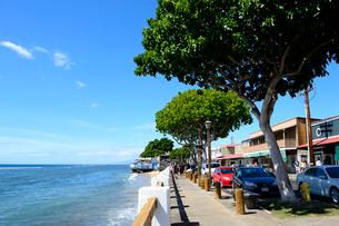 ラハイナのフロント通りと海の写真素材 [FYI01690497]