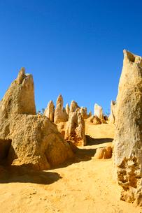 パース郊外のピナクルスの奇岩群の写真素材 [FYI01690501]