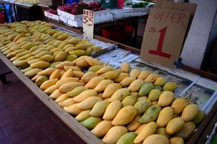 果物屋の店先のマンゴーの写真素材 [FYI01690647]