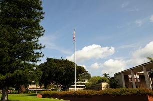 オアフ島のハワイ大学のキャンパスの写真素材 [FYI01691332]