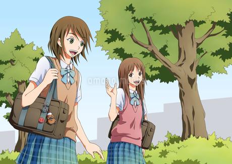 挨拶を交わす女子学生たちのイラスト素材 [FYI01691427]