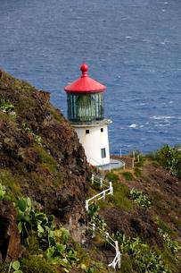 マカプー岬のマカプー灯台の写真素材 [FYI01691435]