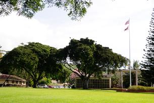 オアフ島のハワイ大学のキャンパスの写真素材 [FYI01691452]