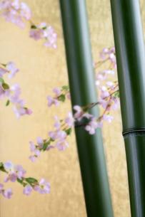 竹と造花の桜の写真素材 [FYI01691624]