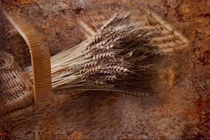 篭に入れた,麦の穂の写真素材 [FYI01691728]