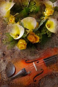 カラー,バラ,ビバーナムスノーボールとバイオリンのイメージの写真素材 [FYI01691816]