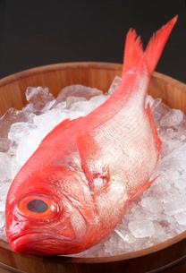氷をはった桶にのせた、金目鯛の写真素材 [FYI01691843]