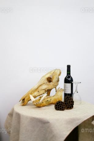 テーブルにワインと動物の骨の写真素材 [FYI01691850]