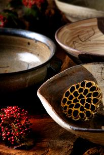 陶磁器とガマズミの写真素材 [FYI01691962]