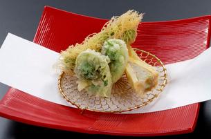 こごみとアスパラの天ぷらと竹の子のはさみ焼きの写真素材 [FYI01691975]