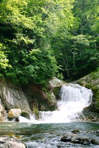 照葉峡の渓流風景の写真素材 [FYI01692002]