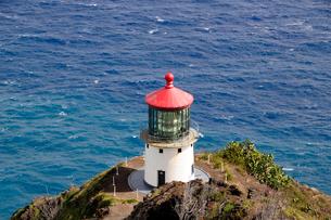 マカプー岬のマカプー灯台の写真素材 [FYI01692013]