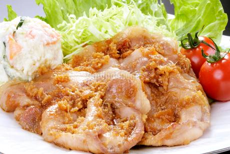 豚肉の生姜焼きの写真素材 [FYI01692200]