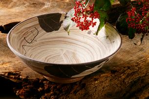 陶磁器、陶器の写真素材 [FYI01692352]