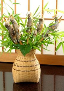 岩魚の串焼きと竹の葉の写真素材 [FYI01692364]
