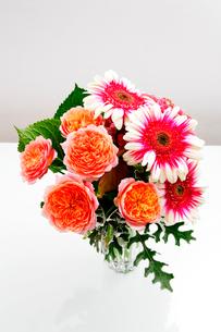 花器に入れた薔薇とガーベラの花の写真素材 [FYI01692519]