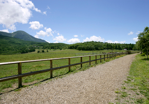 蓼科山と牧場の馬の写真素材 [FYI01692559]