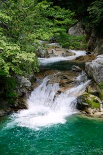 照葉峡の渓流風景の写真素材 [FYI01692594]