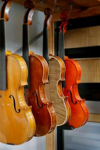 ヴァイオリンの修理工房の写真素材 [FYI01693104]